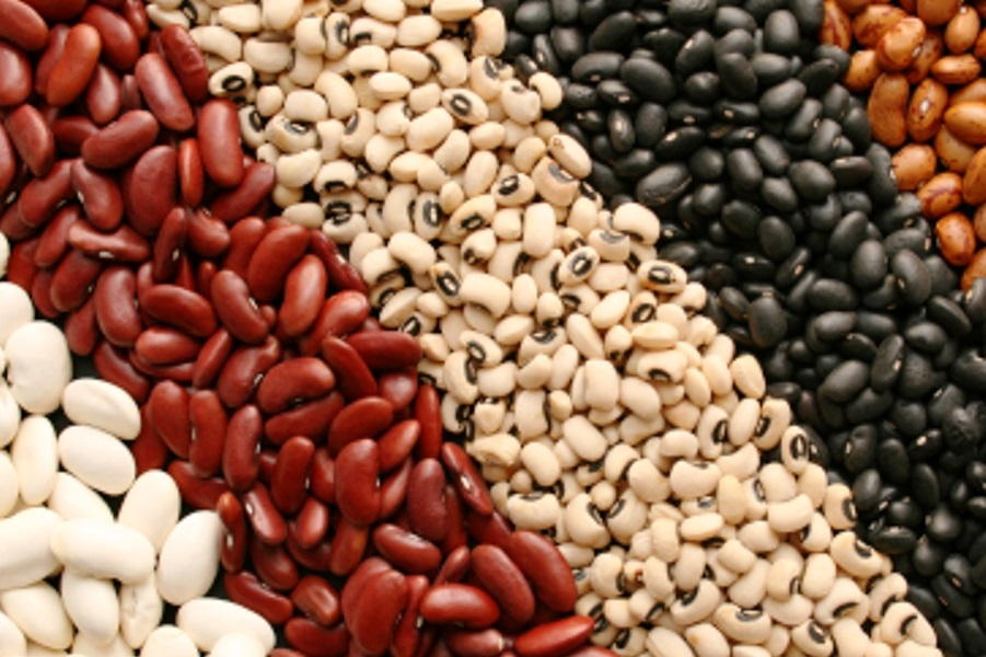 Beans Prices Slow Down