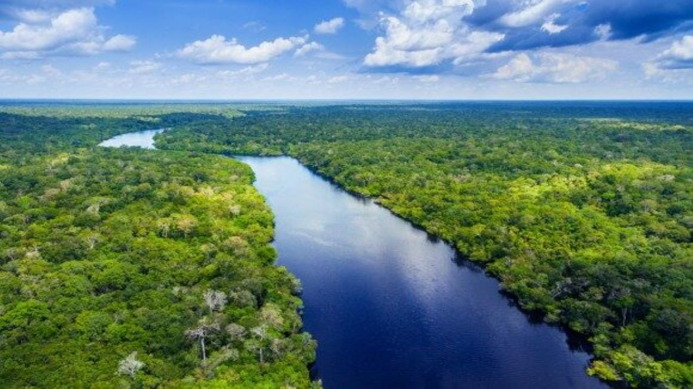 Sustainable Foreign Direct Investment in the Amazon
